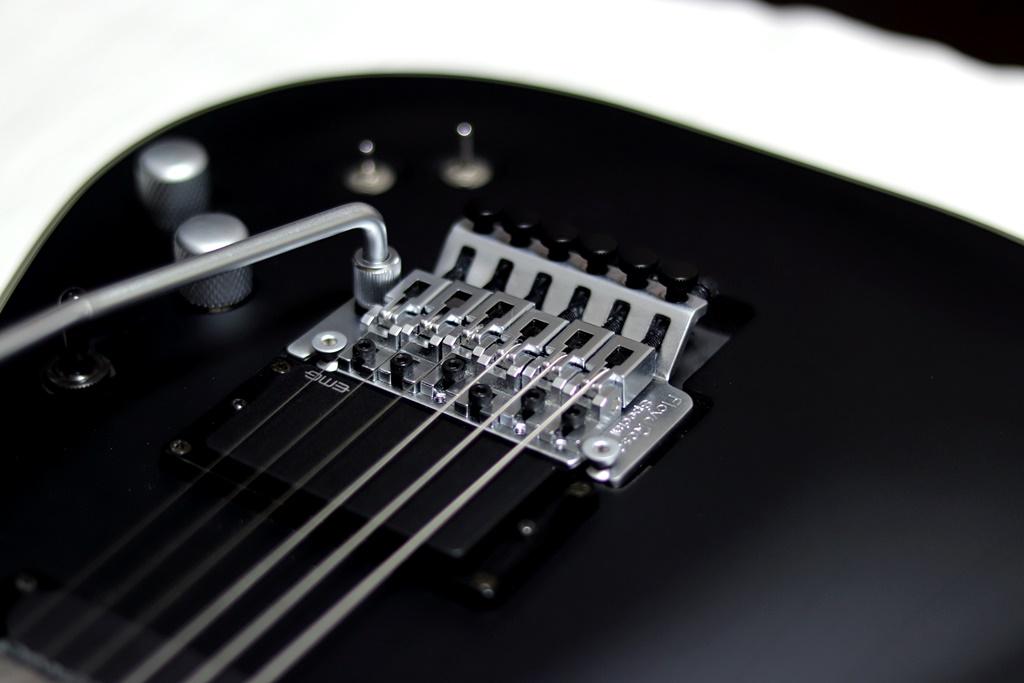 Schecter Damien Platinum-6 FR S