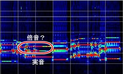 ベースの周波数帯域