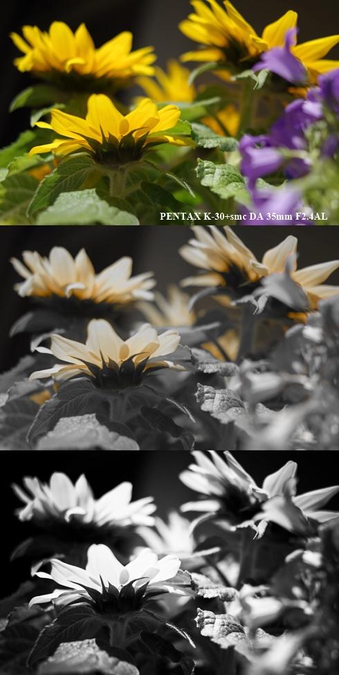 PENTAX K-30+smc DA 35mm F2.4AL