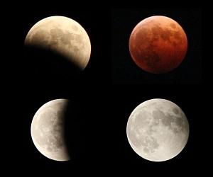 皆既月食2014cat